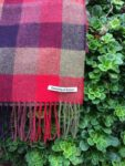 Berry Check Lambs Wool Scarf